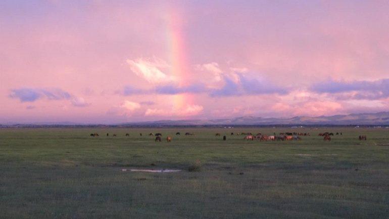 Mongolië: Geluk op de wereld